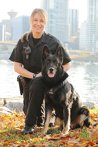 VANCOUVER, BC.: Jan. 2, 2013 – Vancouver Police Service Dog Hondo died Jan. 1. He was the partner of Const. Sandra Glendinning, who blogged about policing on behindtheblueline.ca, for eight years and had retired just over a week earlier. - Submitted Photo: Sandra Glendinning/Behind the Blue Line  (for story by Jennifer Saltman)